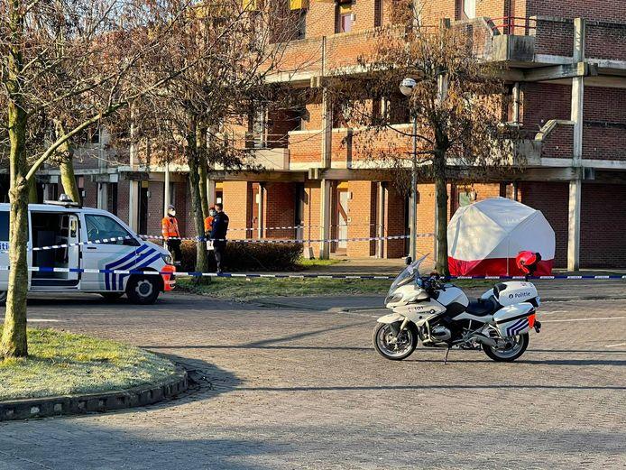 Het levenloos lichaam werd zondagmorgen rond 7.20 uur opgemerkt in de Korenbloemlaan in Oostende. Voor het slachtoffer kon geen hulp meer baten.