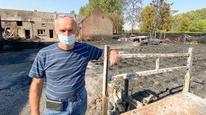 """Boomkweker meet schade op na indrukwekkende brand in Nederename: """"Dit was niet meer te redden, maar we bouwen dit samen weer op"""""""