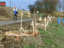 Rijkswaterstaat kapt oude en zieke bomen in Flevoland