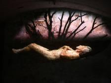 Intrigerende en mysterieuze expositie in Zutphen 'moet je ervaren'