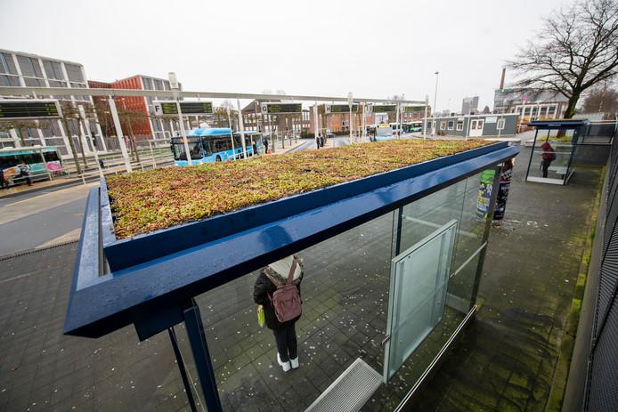 Ook in Apeldoorn kun je voortaan onder een groen dak op de bus wachten.