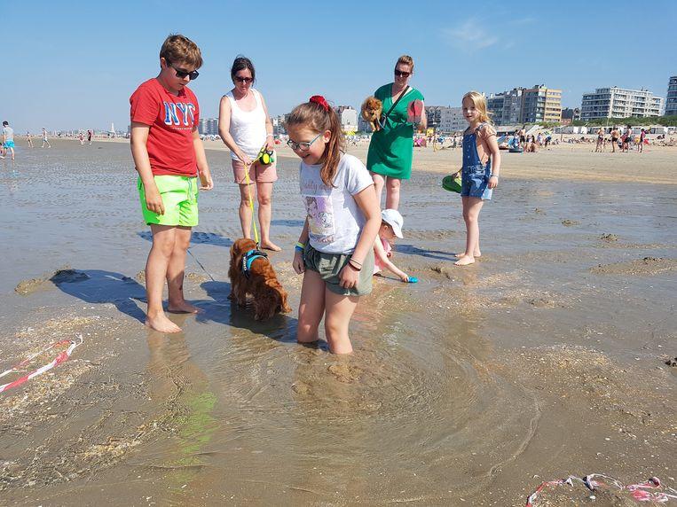 Lotte Luyten (11) uit Balen met haar familie. De verwondering over de bron is groot.