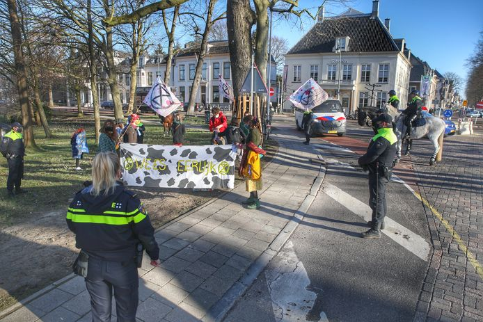 Demonstranten en agenten bij de Maliebaan.