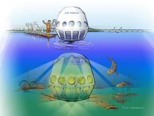 Onderwaterlift in de Oosterschelde: 'Hier is zo veel moois te zien, we willen dat iedereen het kan bekijken'
