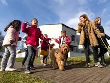 Even stoom afblazen met 'schoolhond'  Hannes in Meerhoven