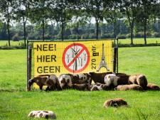 Wel 'hoge joekels' van windmolens op boerenerven in Wijk en Cothen, niet in Langbroek