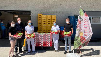 """Slaboer (55) herstelt van corona en schenkt 200 groentepakketten aan ziekenhuispersoneel: """"Eentje voor elk uur dat ik er verbleef"""""""