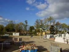 Kappen van zeventien bomen langs het Wantij mag ondanks protest