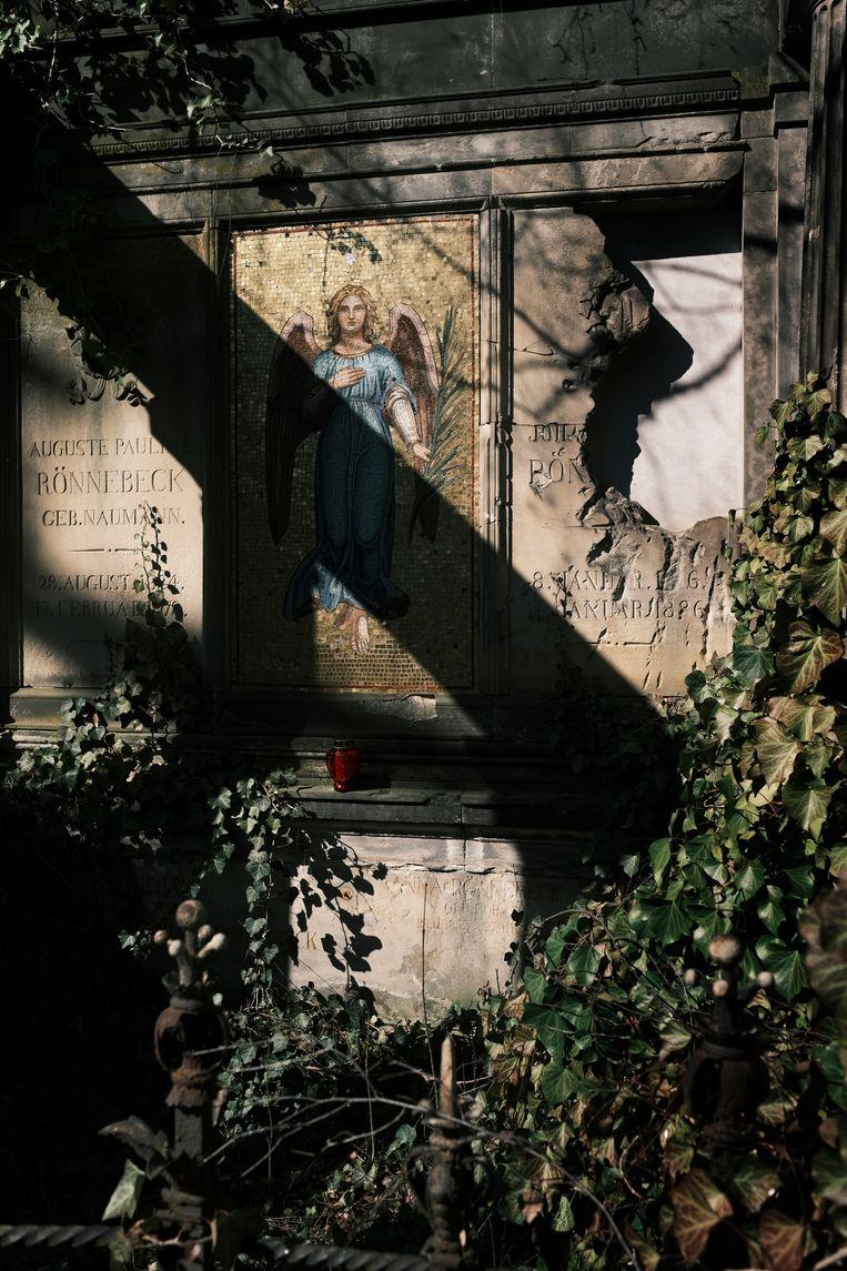 Op een begraafplaats aan de Bergmannstrasse in Berlijn. 'Elk paadje heeft hier z'n eigen mysterie.' Beeld Daniel Rosenthal
