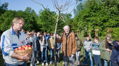 Radio 2 appelboom groeit in de snoepjestuin