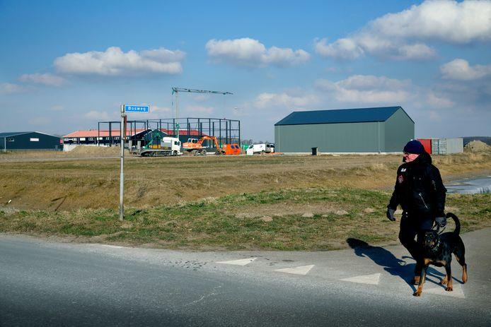 Enkele loodsen op industrieterrein langs de Noord-Achterweg. (RD/HW)