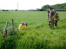 Schaap en lammetje uit water gered in Wageningen