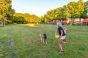 Op het Wilhelminaveld in Bergen op Zoom blijft het deze zomer ook weer stil. Geen Palm Parkies. Wel genoeg plaats om de hond uit te laten.