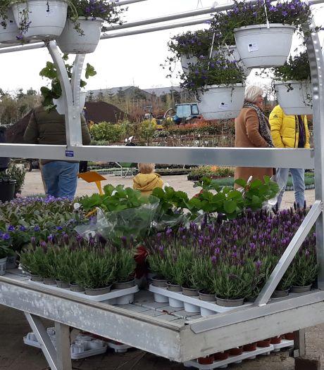 Kwekerijen doen goede zaken in coronatijd: 'Plantjes kopen is funshoppen'