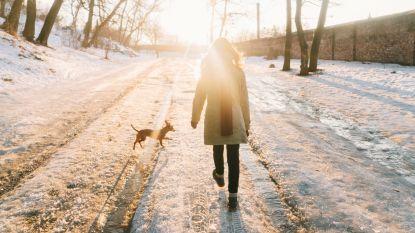 De mooiste winterwandelingen om deze kerstvakantie te gaan uitwaaien