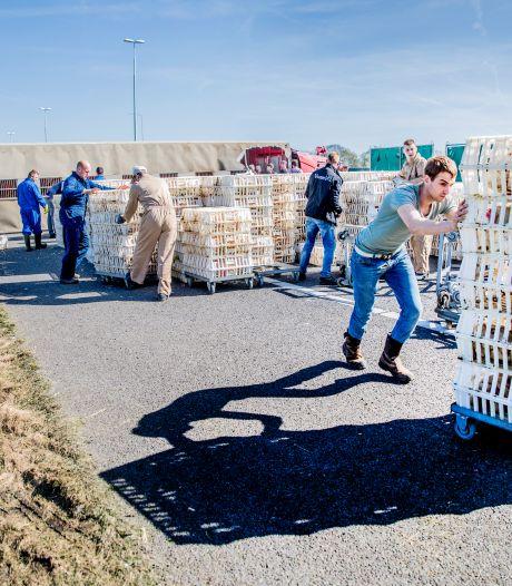 Gecrasht kippentransport op A50 was afkomstig uit Denemarken