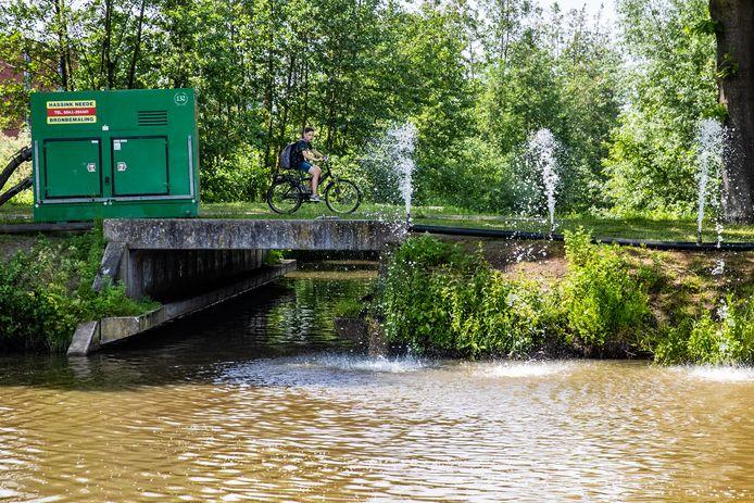 Tientallen vissen zijn uit de watergangen in de Vijfhoek gevist: vervuild water kwam in de sloten in de wijk terecht.