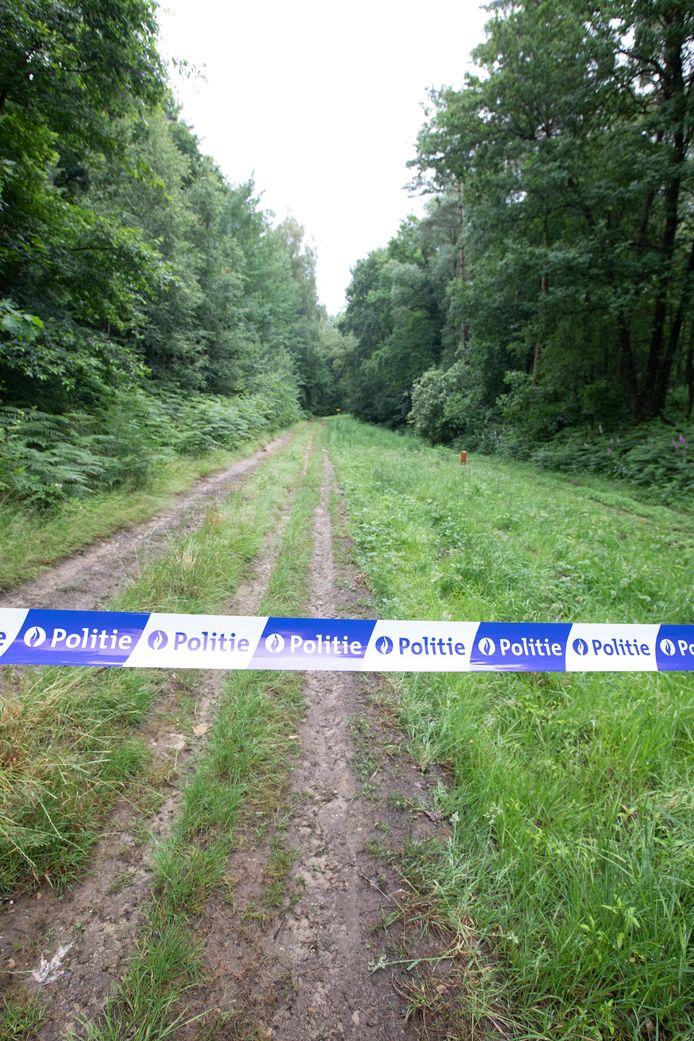 Het Dilserbos, waar Jürgen Conings na 35 dagen lang eindelijk toevallig gevonden werd.