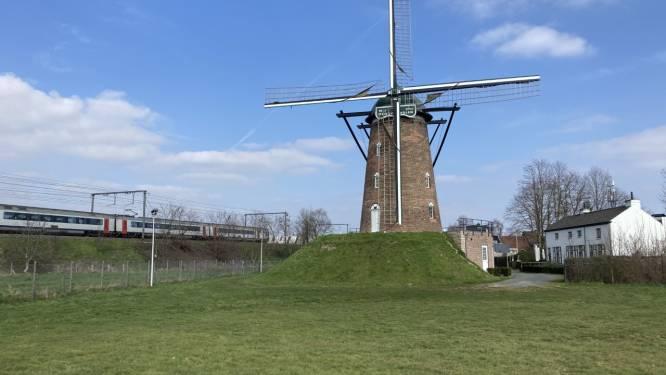 Zondag molendag: wieken Heirbrugmolen draaien en raamverkoop