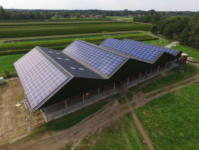Het geld voor de zonnepanelen op de stal van veehouder Sjaak Sprangers in Kaatsheuvel werd opgehaald door crowdfunding. Buurtbewoners profiteren mee van de opbrengst.