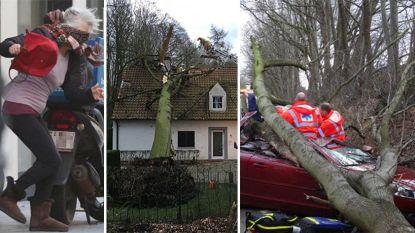 Kind krijgt steen op hoofd door wind, 12-tonner van de weg geblazen