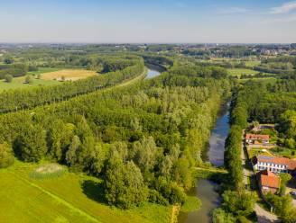 Provincie verwerft 25 hectare waardevol natuurgebied in Scheldevallei