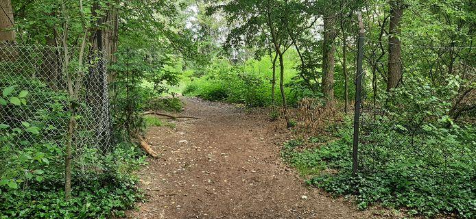 De hekken verdwijnen, al houden die wandelaars nu al niet tegen in de bosrijke omgeving waar woningen komen.