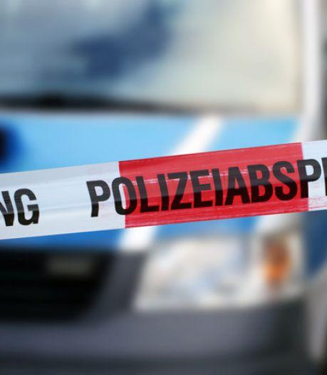 Dronken Nederlander zwaargewond bij botsing tegen boom, hond blijft ongedeerd