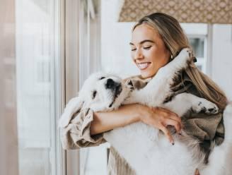 POLL. Ben jij een voorstander van ouderschapsverlof voor je puppy of kitten, ofwel 'pawternity leave'?