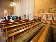 Vleermuis laatste hoop tegen sloop kerk in Son