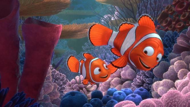 Nieuwe, donkere theorie over 'Finding Nemo' maakt fans helemaal gek