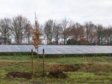 Breed verzet tegen zonneparken in Oude IJsselstreek: tal van bezwaren van bewoners
