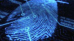 Veiligheid boven privacy: hoe Vadertje Staat uw vingerafdruk te pakken kreeg