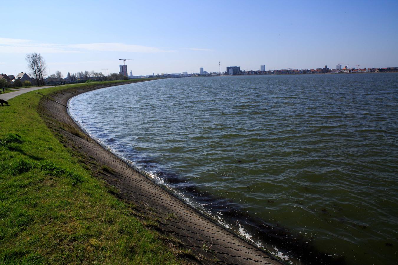 De bendeoorlog vond plaats rond in de buurt rond de Spuikom.