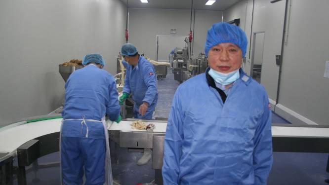 Chinese Temsenaar bestormt Europese markt met dumplings van Lokerse makelij