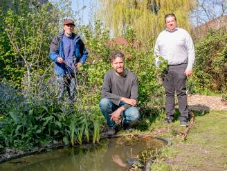 Dit weekend Velt-ecotuindagen: twee tuinen te bezichtigen in Sint-Niklaas