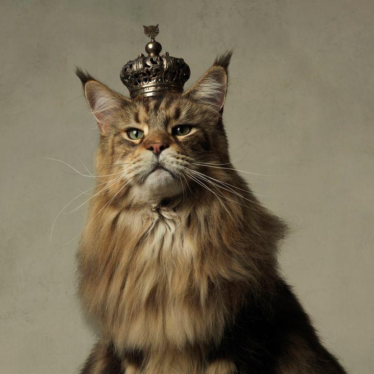 His Majesty uit de fotoreeks Majestic van Marie Cecile Thijs  Beeld Marie Cecile Thijs