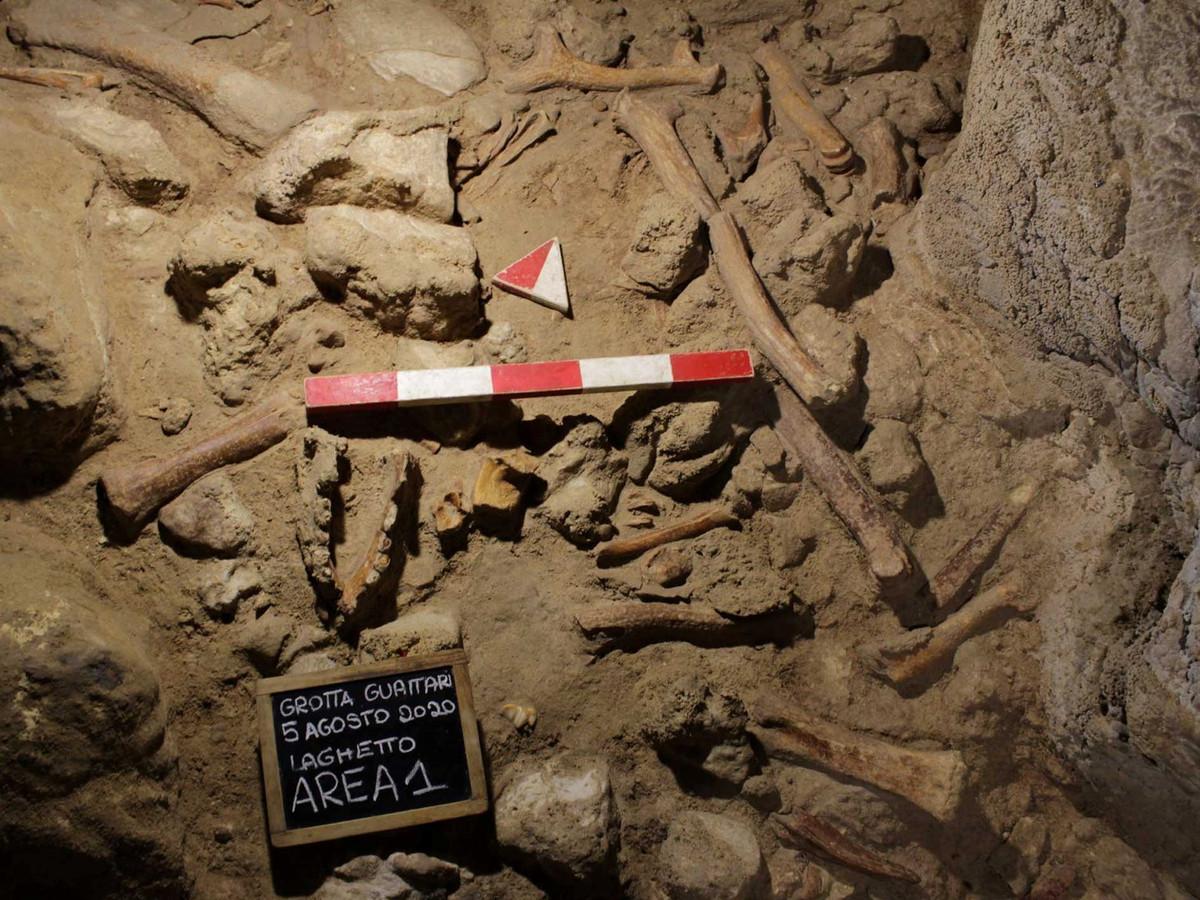 Pour le responsable des fouilles, Francesco Di Mario, ces individus sont représentatifs d'une population de Néandertaliens qui devait être assez importante dans cette région.