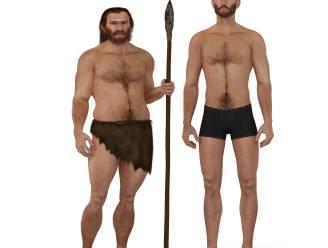 Neanderthaler was geen ongelikte beer
