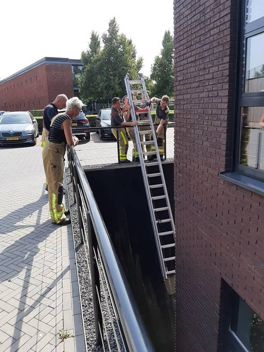 Er was een lange ladder nodig om de bodem van de vijf meter ombouw te bereiken.