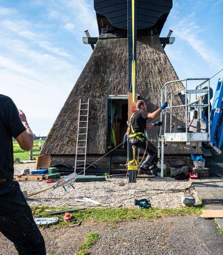 Westveense Molen uit 1676 wordt voor tonnen opgeknapt: 'Dit hoort gewoon bij Nederland'
