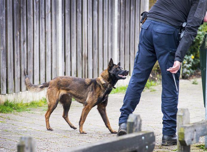Een politiehond in actie. Foto ter illustratie.