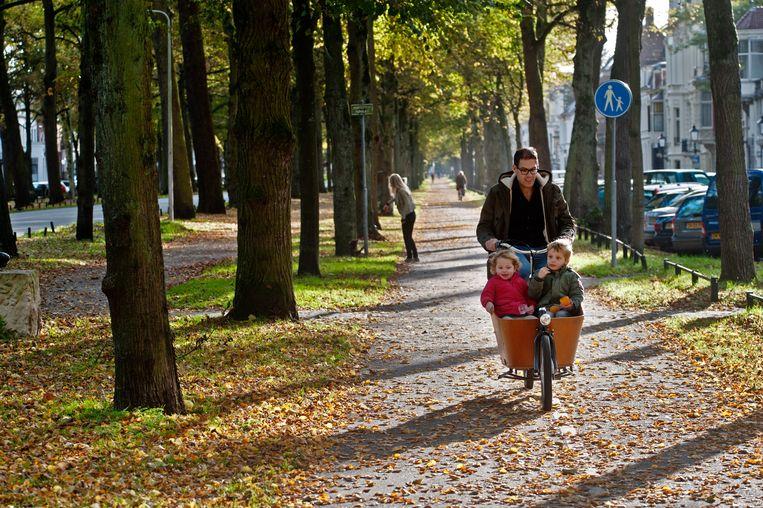 De Maliebaan was de straat met het eerste 'rijwielpad' in Nederland. Beeld Hollandse Hoogte / George Burggraaff