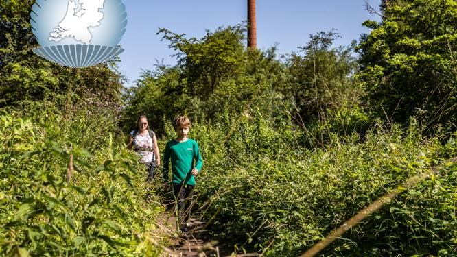 De Duursche Waarden: het groenste industrieterrein ligt langs de IJssel