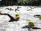 280 zwemmers duiken in steeds schoner water de Berkel
