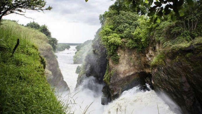 Murchison Falls National Park in Oeganda.