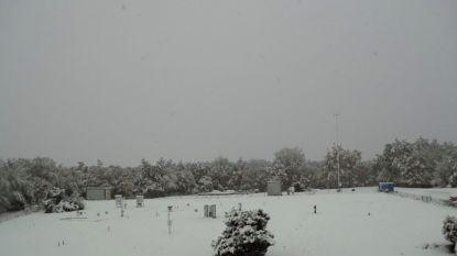 VIDEO. Eerste sneeuw in Ardennen valt vroeg voor de tijd van het jaar, maar sneeuwpret is van korte duur
