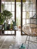Tover je woonkamer om tot een urban jungle met kamerplanten