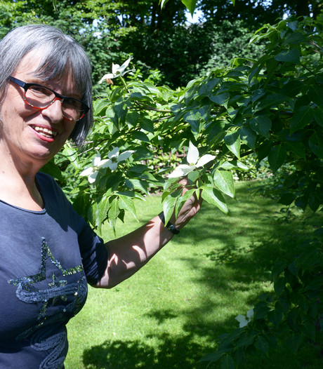 Laatste aflevering BN DeStem TuinAward deel 8: Tuin van Gerda Smink in Rijen