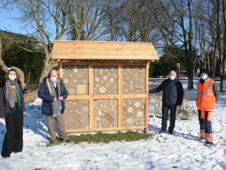Patiënten van psychiatrisch centrum bouwen bijenhotel voor Wolfsbergpark